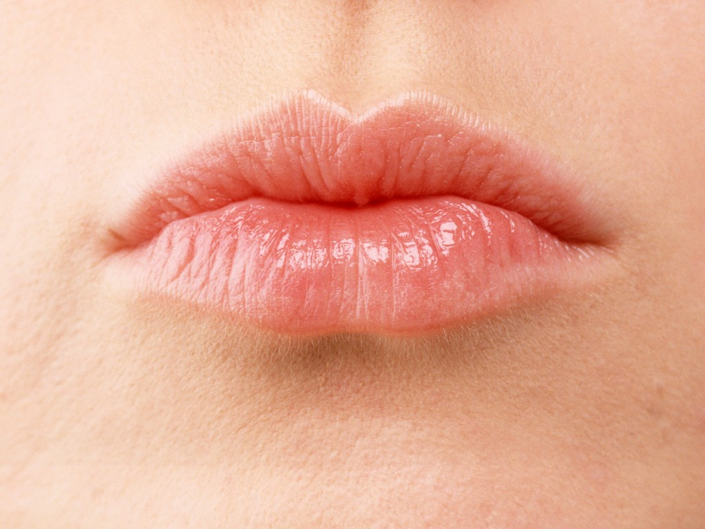 женские губки